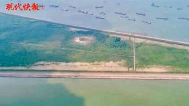 """太美啦!""""最美长江岸线""""常熟铁黄沙生态岛正式开放"""