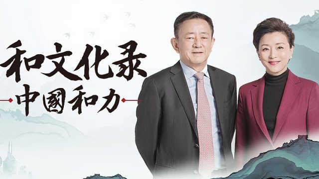 解读《中国和力》| 樊纲:永远要非常谨慎地看待投资(上)