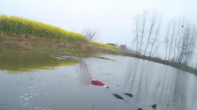 民辅警跳入湖中勇救落水女