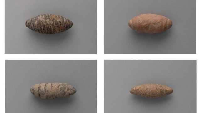 遗址挖出6千年前石雕蚕蛹,嫘祖养蚕传说或成真