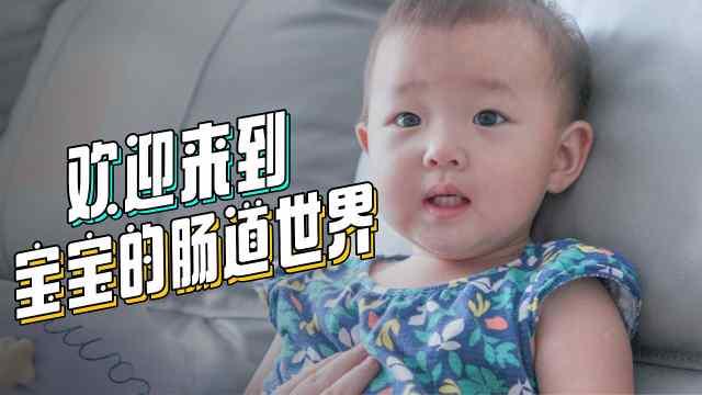 欢迎来到宝宝的肠道世界
