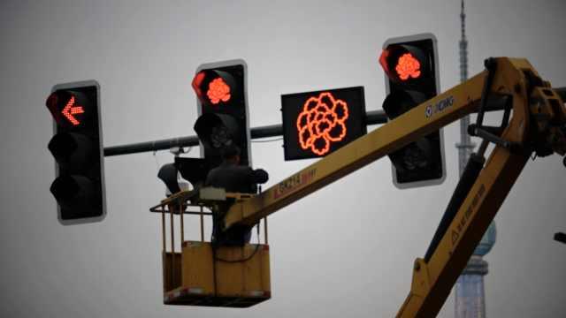 洛阳部分红绿灯变成牡丹花形状,网友:成都大熊猫可以安排上