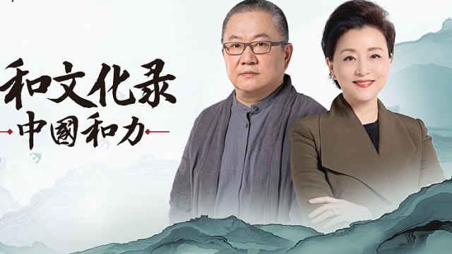 解读《中国和力》王澍:和而不同的一个核心是多样性(下)