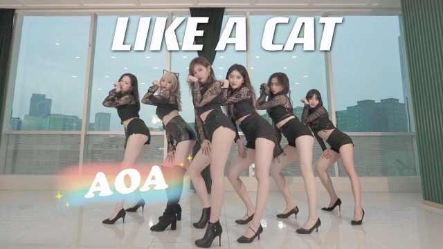 经典回顾|猫步轻俏Like A Cat-AOA舞蹈翻跳