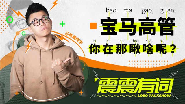 上海车展,宝马高管围观国产品牌?| 震震有词