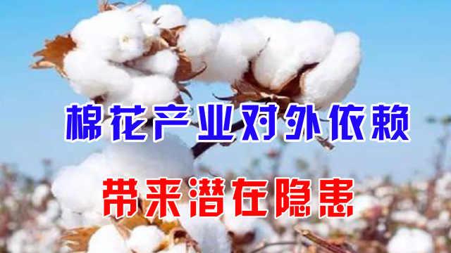 棉花产业对外依存高,或带来潜在隐患