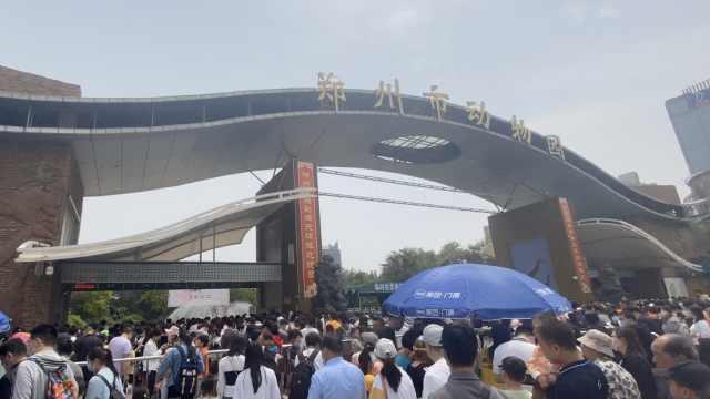 动物看人系列!郑州动物园人满为患,游客直呼看的全是人