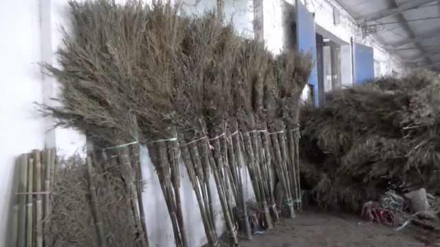 中国扫帚第一村年产值近亿:村民五分钟做一把,年产600万把