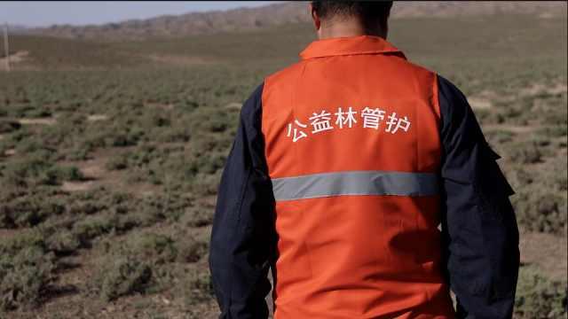 他守护山林14年,每天巡山40公里不见人烟:总要有人去做去