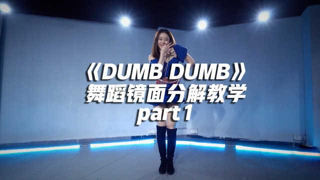 《DUMB DUMB》舞蹈镜面分解教学part1
