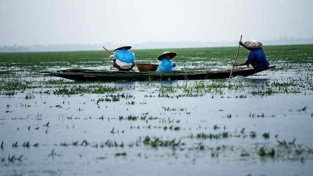 """""""水泽之国""""孟加拉"""