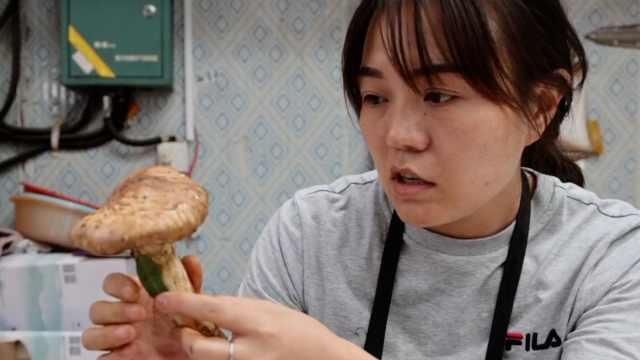 松茸鉴定师一年鉴定60吨松茸:手指当标尺,一捏知品质