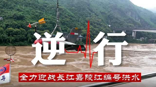 长江嘉陵江同时发生编号洪水,看水文人如何应对?