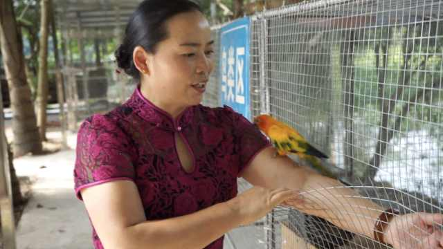 52岁大姐7年义务救助千余只野生动物:每年花近20万,不求回报