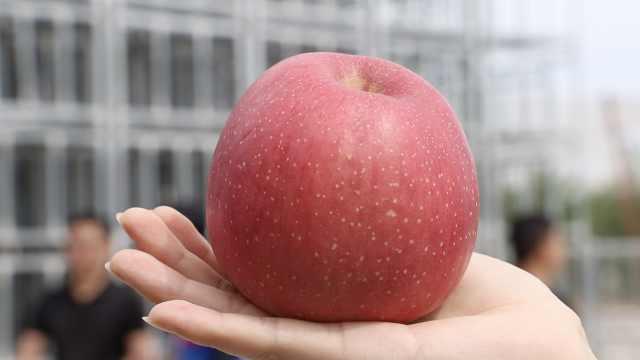 揭秘神州十二号上的陕西苹果:宇航员不用再吃冻干水果