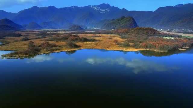 每一帧都如梦境!航拍神农架绝美秋季,云雾浩渺红叶争艳