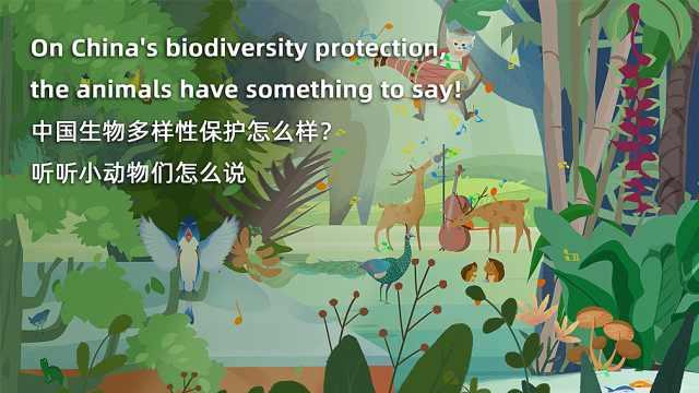 中国生物多样性保护怎么样,听听小动物们怎么说