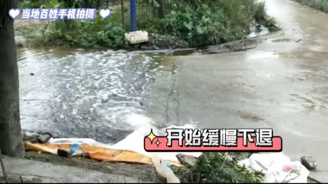 临潼区新市街道孙陈村五百玉米遭水侵泡