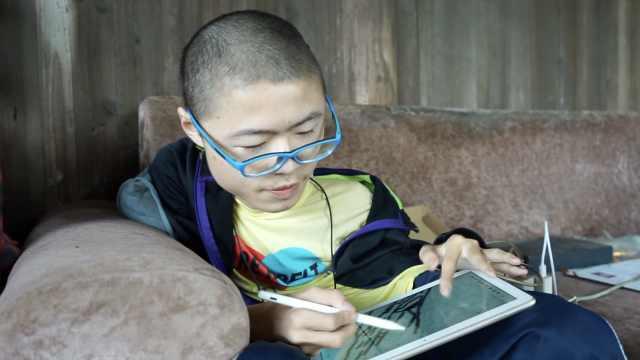17岁少年瘫痪坐轮椅五年画出精美画作,立志成园林设计师