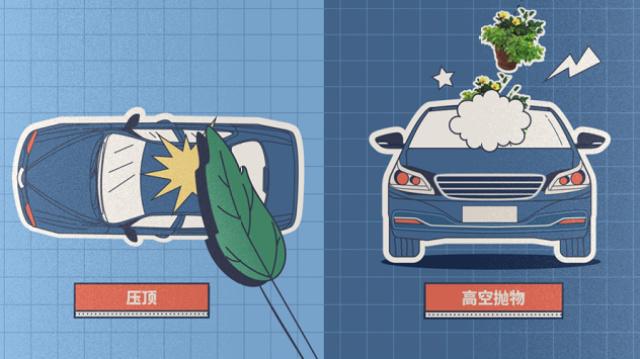 全景天窗和普通车顶哪个更安全?