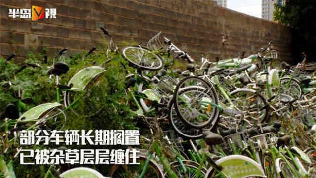 酷骑单车不能退押金事件频发