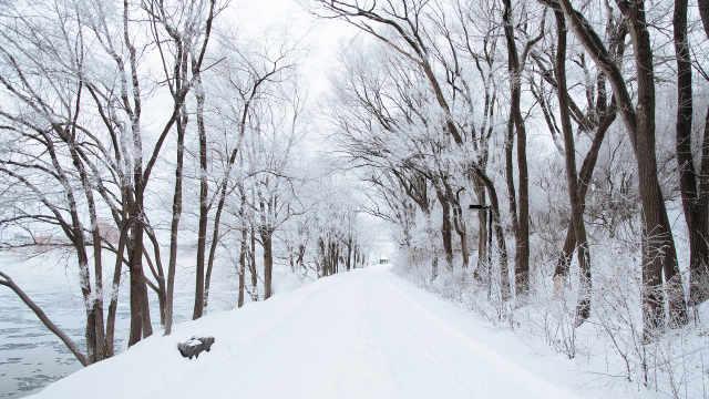 下雪之后为什么感觉世界更安静?