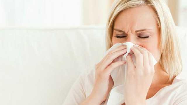 它是通鼻小能手,治鼻炎的良药