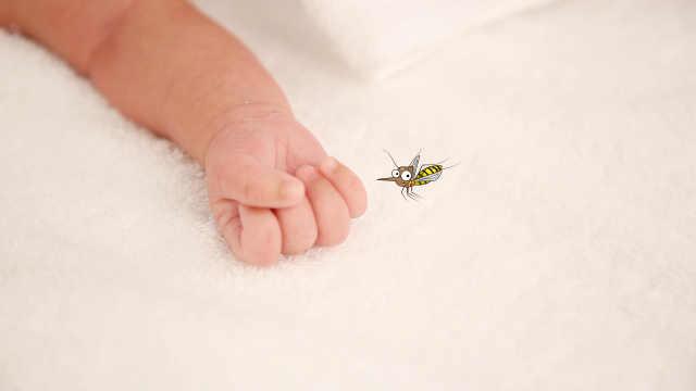 夏季低成本避蚊措施,亲测有效!