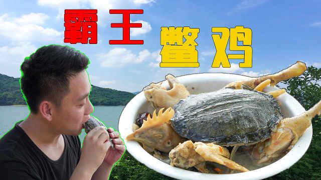 霸王鳖鸡:有些鳖注定成为回忆