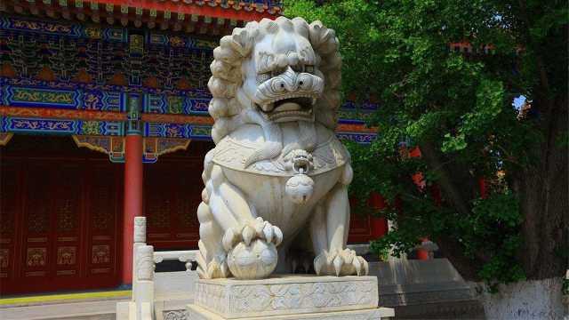 中国没有狮子,石狮子是从哪来的?