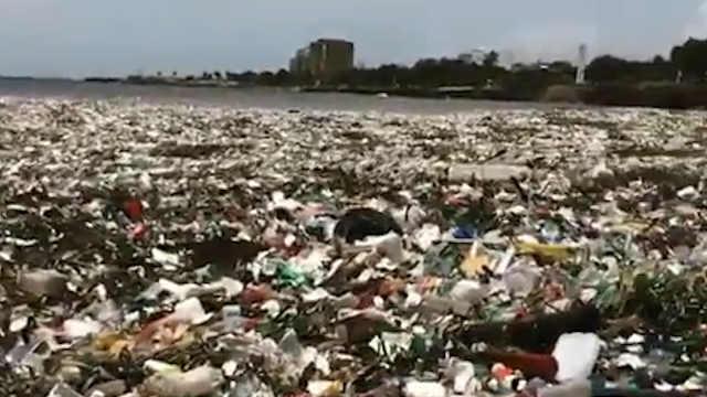 触目惊心!加勒比海面漂满垃圾