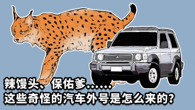 山猫、战神,汽车外号都是咋取的?