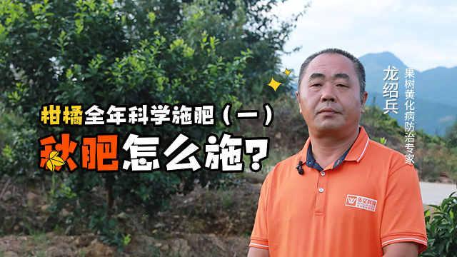 柑橘秋肥施得好,来年高产跑不了!