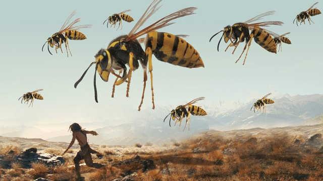 5个活在3亿年前的史前昆虫!