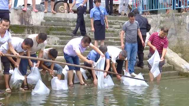4人禁渔期电鱼,被罚投鱼苗补偿生态