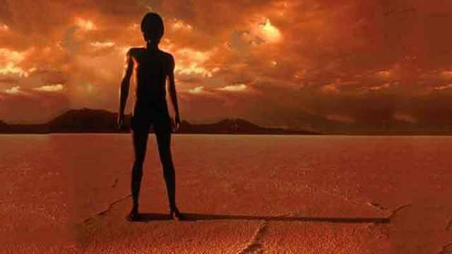 蟑螂放在火星上能存活吗?