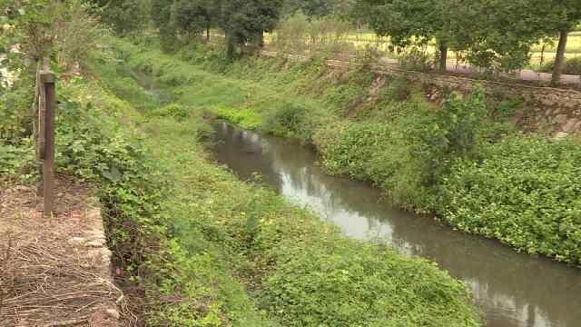 240多万改造河道,河长每天巡河2次