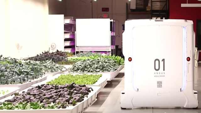 未来农场长这样:机器人完成一切