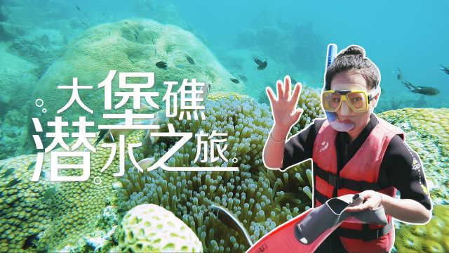 活体珊瑚礁群,宝石般的蓝色海洋