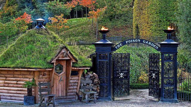 全球最毒花园,拥有95种有毒植物