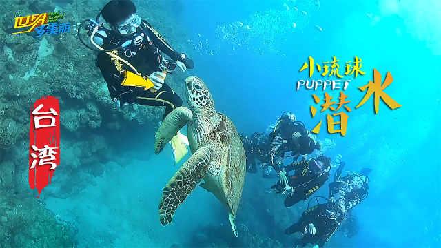 去小琉球潜水,拍世界上最大的海龟