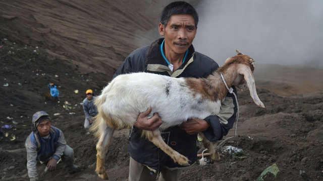 世界最危险的习俗,往火山里扔山羊