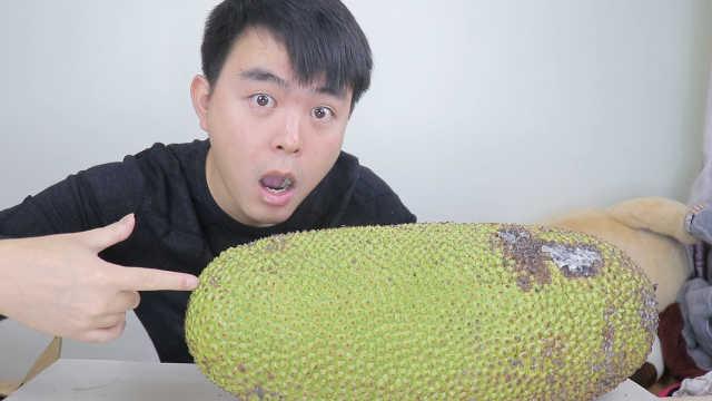 """90元一个22斤的""""菠萝蜜"""""""