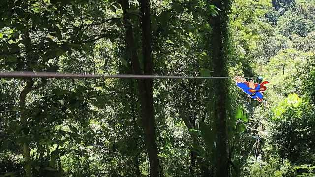 普吉岛惊心动魄的丛林飞跃