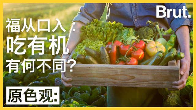 福从口入:吃有机有何不同?