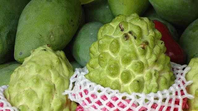 三亚旅游攻略之热带水果哪里买?