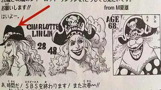 海贼王:大妈28岁时颜值不输女帝