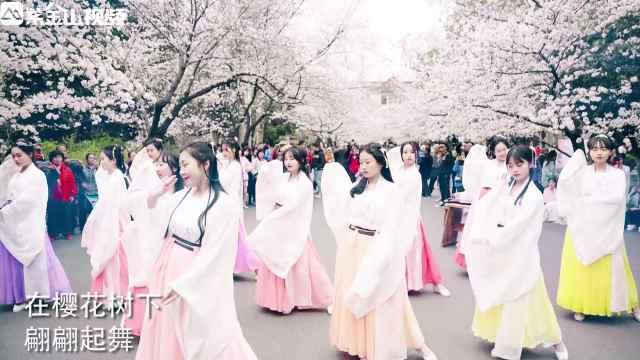南林小姐姐穿汉服与樱花共舞