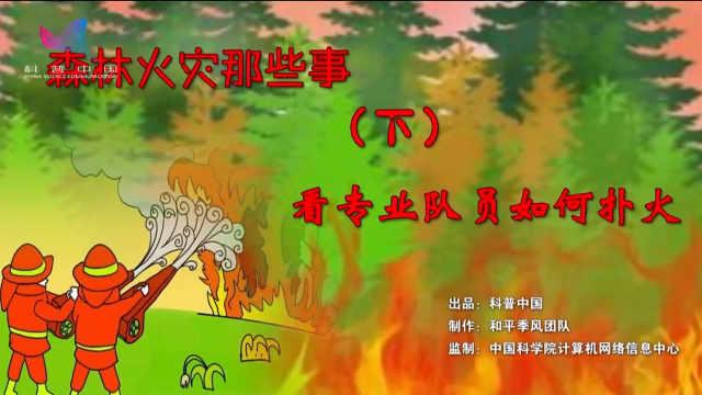 森林火灾那些事(下)
