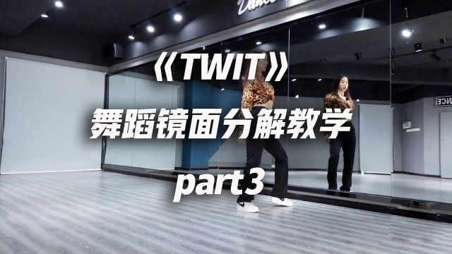 华莎《TWIT》舞蹈镜面分解教学p3